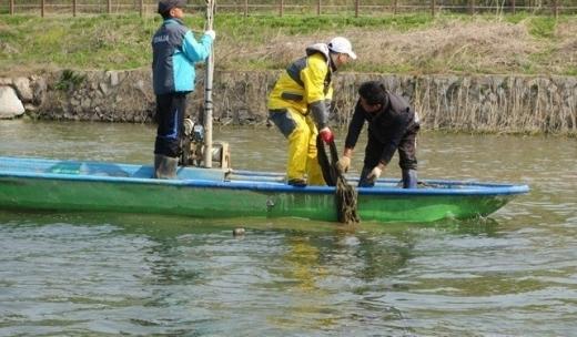 경기도가 10월 한 달간 가을철 성육기 어패류 보호를 위한 해면·내수면 불법어업 도-시·군 합동 단속을 실시한다. / 사진제공=경기도