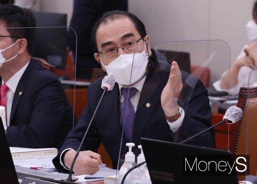[머니S포토] 2020 국감서 발언하는 태영호 의원