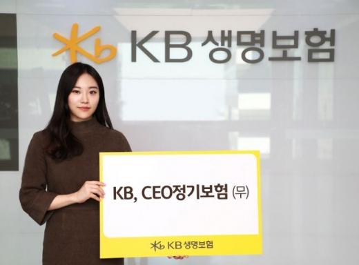 KB생명, 간편심사형 포함된 'CEO정기보험' 출시