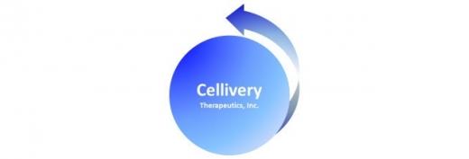 셀리버리의 코로나19 치료후보물질이 미국 조기 임상시험 진입이 기대되고 있다./사진=셀리버리