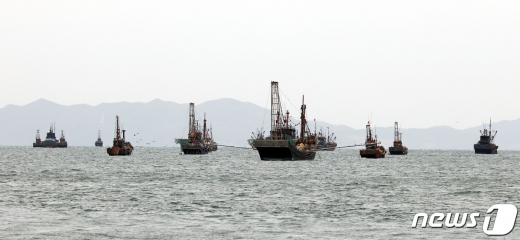 동해에서 조업을 하던 어선이 북방한계선(NLL)을 넘기 직전 해군에 의해 발견됐다. 사진은 사건과 무관하게 지난 14일 NLL 해역에서 중국어선들이 불법조업을 벌이고 있는 모습. /사진=뉴스1