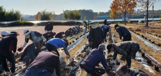 구리시(안승남 시장)가 '한강시민공원 정원화'를 통해 전국 명소로 조성한다고 3일 밝혔다. / 사진제공=구리시
