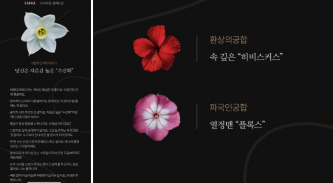 꽃으로 알아보는 성향 테스트인 '꽃 테스트'가 화제다./사진=LU42