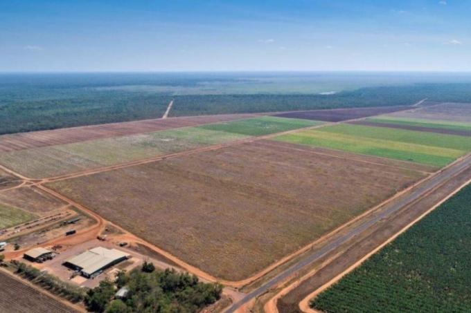 지난 10일 미국 ABC뉴스에 따르면 에르메스는 호주 노던 테리토리에 최대 5만 마리의 바다악어를 양식할 악어 농장을 건설하고 있다. /사진=ABC뉴스 제공