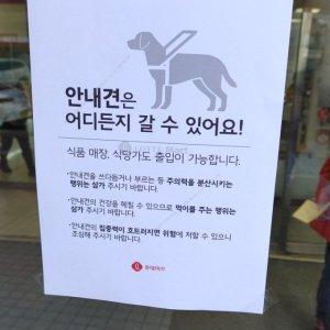"""불매 표적된 롯데마트… 뒤늦게 """"안내견 어디든 갈 수 있다"""""""