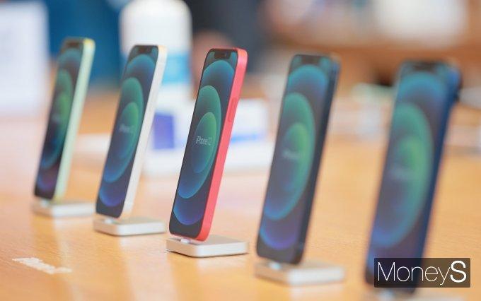 애플의 아이폰12 일부 기기에서 네트워크 연결 문제가 발생하고 있는 것으로 알려졌다. /사진=장동규 기자