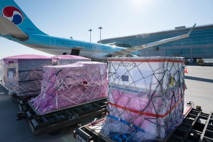 대한항공이 국내 항공업계 최초로 코로나 백신 원료 수송에 나선다./사진=대한항공
