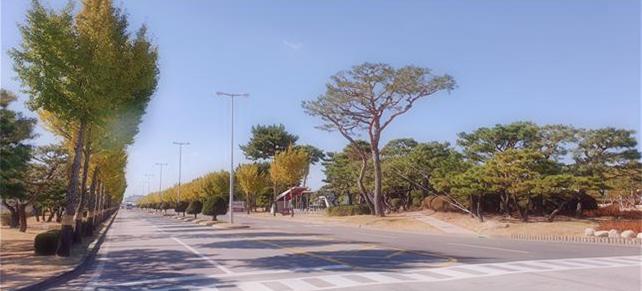 나무심기 운동 참여 기업 전경. / 사진제공=경기도