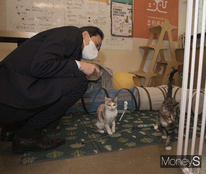 [머니S포토] 고양이 상태 살펴보는 우상호 의원