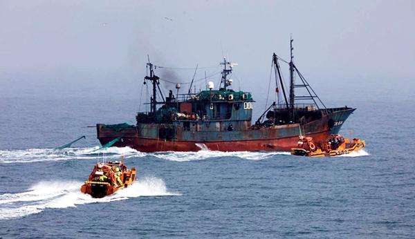 서해지방해양경찰청과 해양수산부 서해어업관리단이 우리측 어업협정선 내에서 무허가 불법조업 중이던 중국 저인망어선 1척을 나포하고 있다. /사진=뉴스1