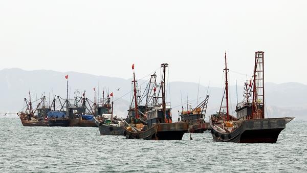 인천 연평도 북측 서해 북방한계선(NLL) 해역에서 중국어선들이 불법조업을 벌이고 있다. /사진=뉴스1