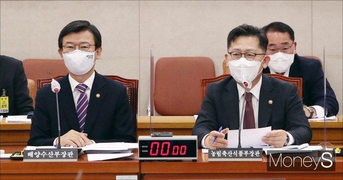 [머니S포토] 의원 질의 답하는 김현수 장관