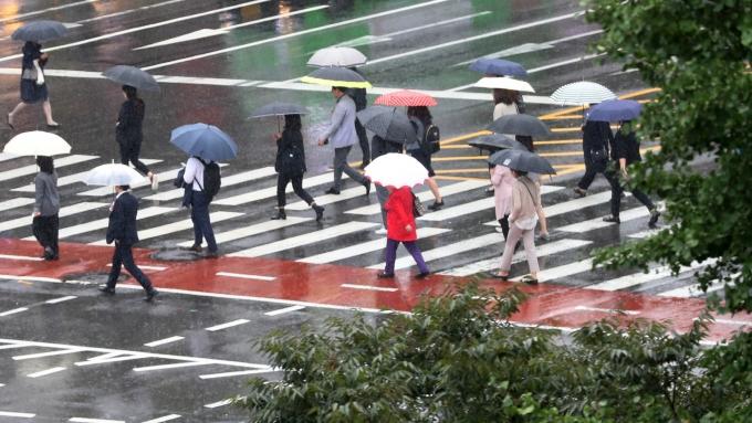 3·1절인 월요일(1일)에는 포근한 봄기운 속 전국에 비가 내린다. /사진=뉴시스 DB