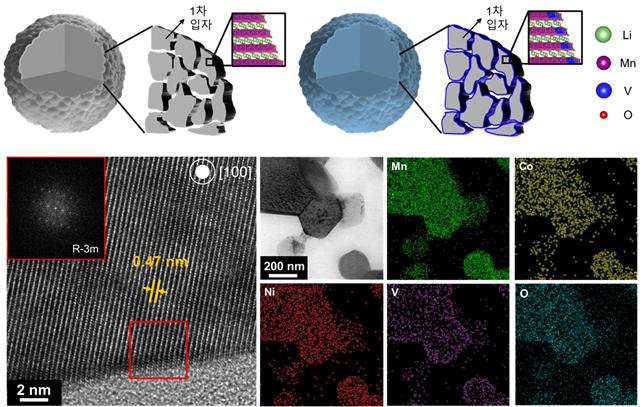 바나듐 이온 도핑 전후 양극소재의 모식도(상)와 도핑된 양극소재의 실제 투과 현미경(TEM) 이미지 및 조성 분포도(하)/사진=카이스트