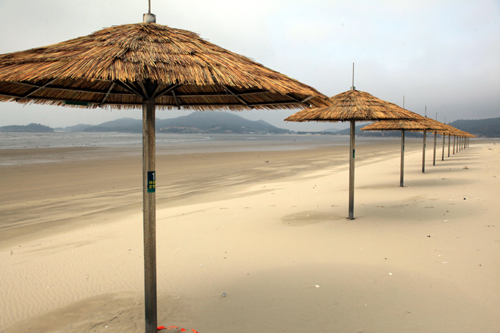 힐링의 섬 전남 신안 증도 짱뚱어 해수욕장/ 홍기철기자