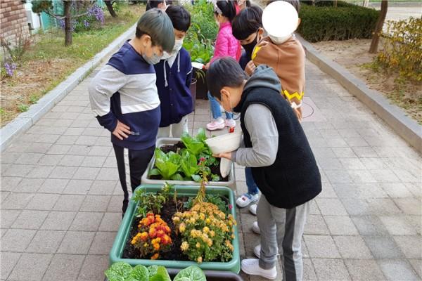 의정부시(시장 안병용) 도시농업과는 관내 10개 초·중·고등학교를 대상으로 학교 생태 텃밭인 스쿨팜을 조성한다고 10일 밝혔다. / 사진제공=의정부시