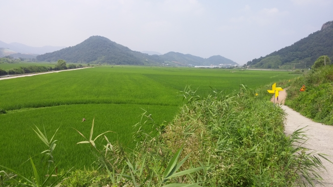 김해 봉하뜰 친환경농업단지 전경/사진=김해시