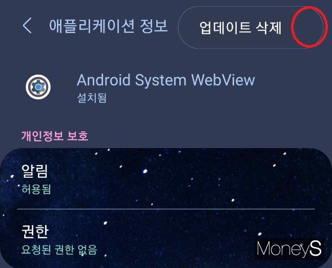 빨간 원 부분에 위치한 점 3개를 누르면 업데이트 삭제 메뉴가 뜬다. /사진=스마트폰 화면 캡처