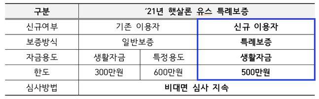 2021년 햇살론 유스 특례보증 계획 /표=서민금융진흥원