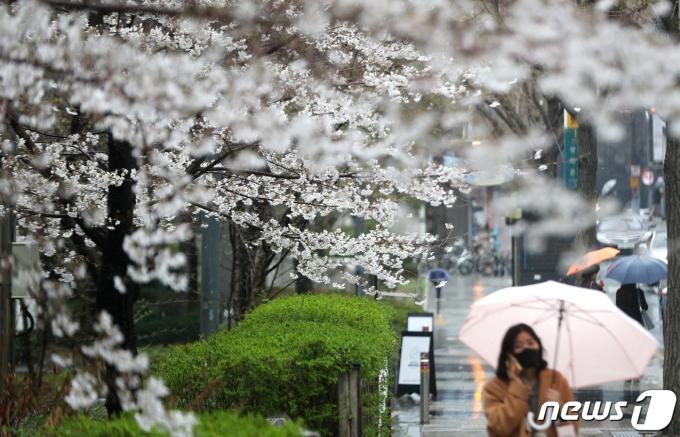 오늘 오후부터 전국에 비가 예보됐다./사진=뉴스1