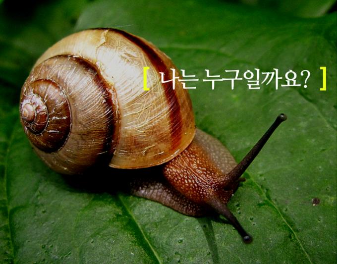 ©아이스크림미디어
