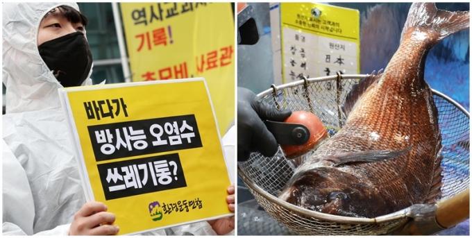 일본 정부가 후쿠시마 오염수가 안전하다며 바다에 방출한다고 하자 한국 누리꾼들이 비판의 목소리를 높였다. /사진=뉴스1