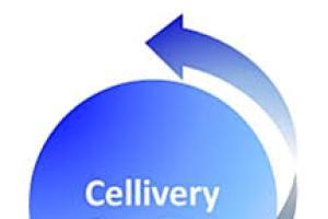 [특징주] 셀리버리, 크론병 치료제 'iCP-NI' 캡슐제형 생산 소식에 강세