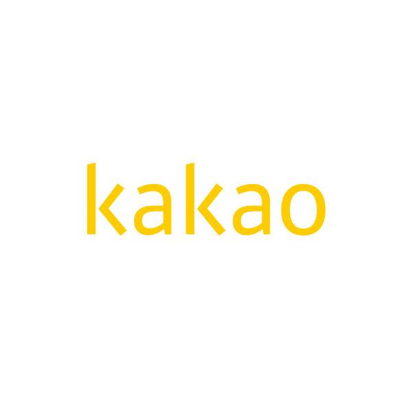 카카오가 쇼핑 애플리케이션 '지그재그'와의 향후 시너지에 대해 기대감을 드러냈다. /사진제공=카카오