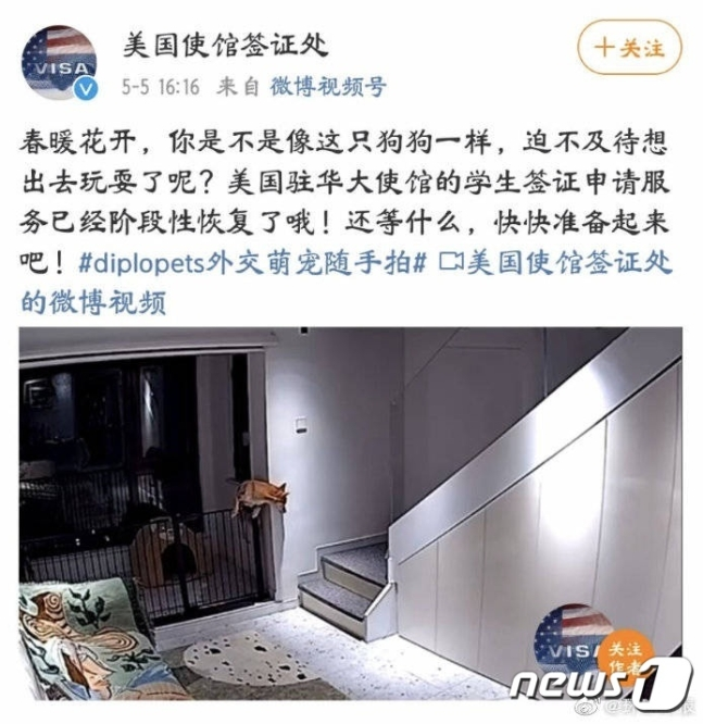 6일 로이터통신 등에 따르면 중국 주재 미국 대사관에서 중국 학생을 '개'에 비유한 사진을 SNS에 올려 문제가 되고 있다. 중국 네티즌을 비롯한 주요 매체들은 이를 '인종차별'이라며 반발했다. /사진=뉴스1(주중 미국대사관 웨이보 캡처)