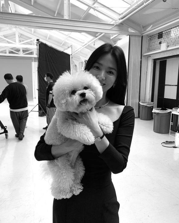 송혜교 인스타그램 캡처 © 뉴스1