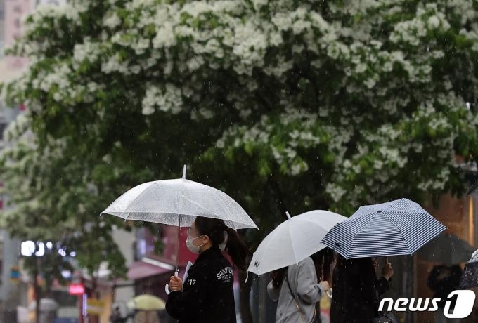 7일 오전 서울 용산구 숙명여자대학교 앞에서 시민들이 우산을 쓴 채 비를 피하고 있다. 2021.5.7/뉴스1 © News1 조태형 기자