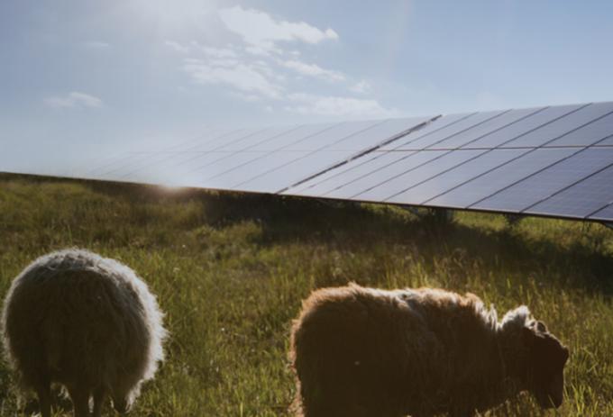12일 이베스트투자증권이 한화솔루션에 대해 태양광 부문이 원가부담 확대로 적자가 지속될 전망이라고 분석했다./사진=큐셀