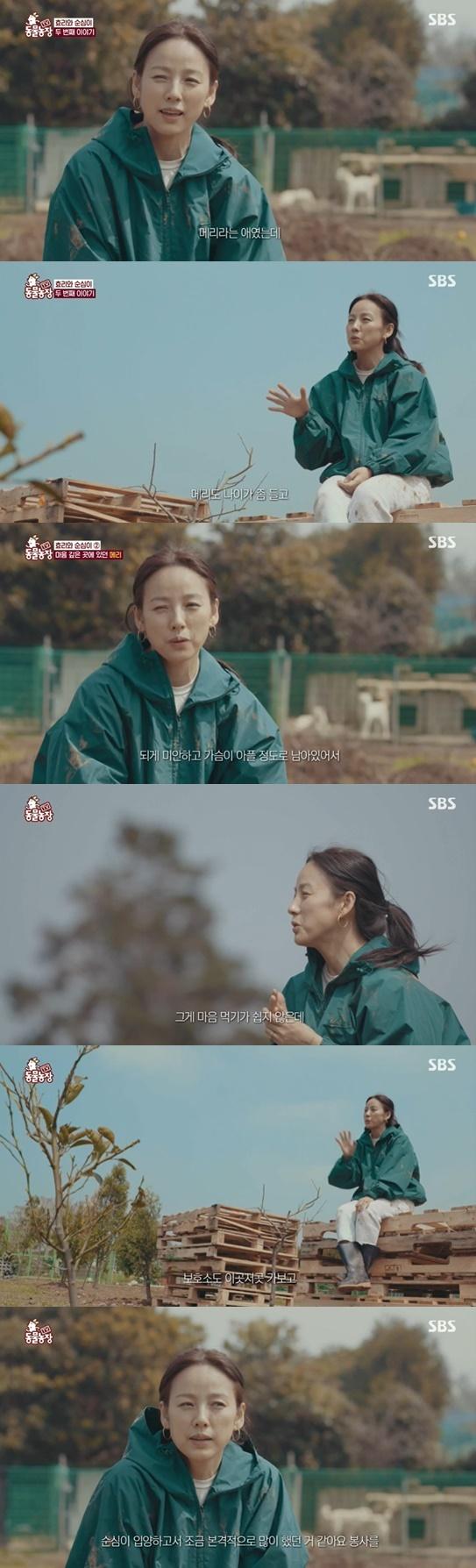 동물농장 이효리© 뉴스1