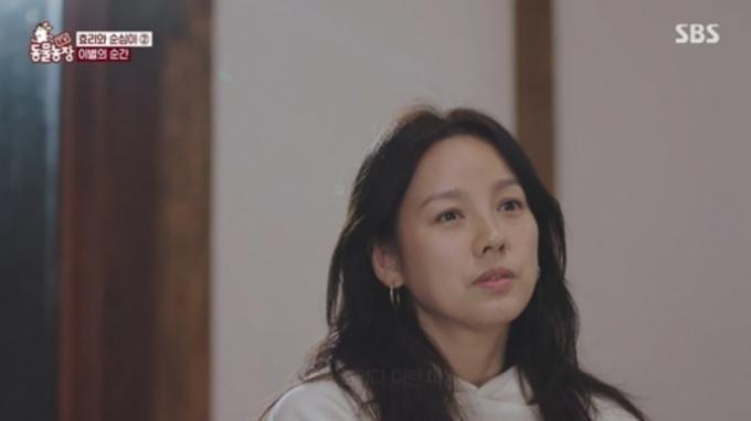 16일 SBS 'TV 동물농장'에서 가수 이효리와 반려견 순심이의 마지막 이야기 '효리와 순심이 3647일간의 기억 2편'이 방송됐다./사진=SBS 'TV동물농장'