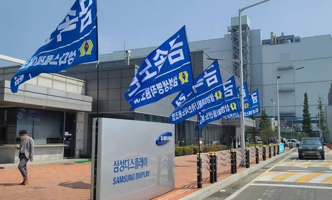 삼성디스플레이 노조가 창사이래 처음으로 파업에 나선다. / 사진=뉴시스