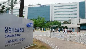 '임금협상 결렬' 삼성디스플레이 노조, 내일 사상 첫 파업 돌입