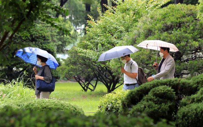 23일은 전국이 대체로 흐리고 천둥·번개를 동반한 소나기가 내리겠다. 사진은 소나기가 내린 지난 22일 서울 여의도에서 시민들이 우산을 쓴 채 걷는 모습. /사진=뉴스1