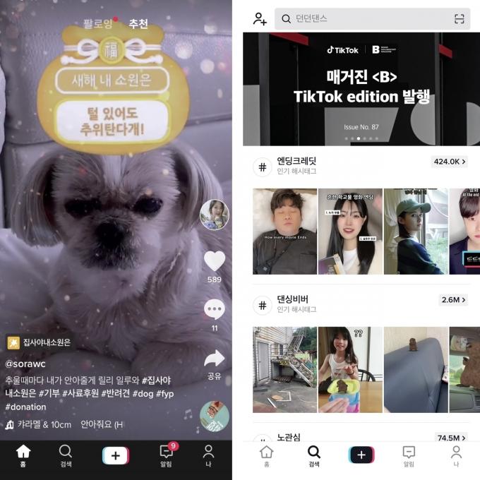 숏폼 영상 SNS 붐을 일으킨 틱톡의 첫 화면(왼쪽)과 검색 탭 화면. /사진제공=틱톡
