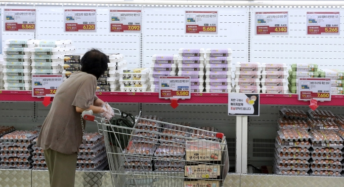 한국소비자 물가감시센터가 생활필수품 38개 품목 조사품목 39개이지만 등락률 확인 가능한 38개 품목만을 분석했다고 27일 밝혔다./사진제공=뉴시스