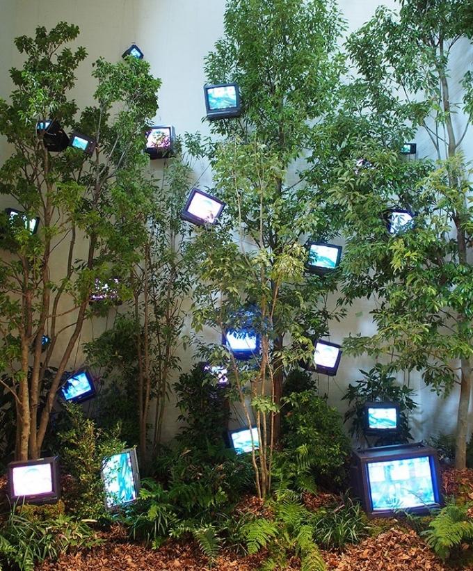 백남준의 '케이지의 숲, 숲의 계시'© 뉴스1