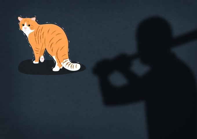 길고양이를 학대해 자인하게 죽인 뒤 영상을 공유하는 네티즌들을 처벌해달라는 내용의 청와대 국민청원에 20만명 이상이 동의했다. /사진=이미지투데이