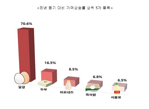 전년 동기 대비 가격 상승률 상위 5개 품목/사진제공=한국소비자단체협의회 물가감시센터
