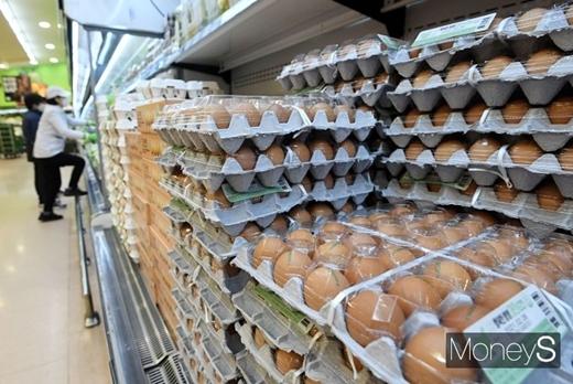 전년 동기 대비 달걀 가격상승률이 70.6%에 달한 것으로 나타났다./사진=장동규 기자