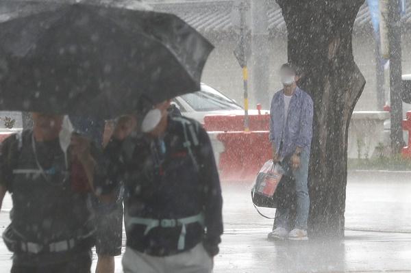 갑작스런 폭우가 내린 지난달 23일 서울 광화문 일대에서 한 시민이 나무 밑으로 몸을 피했다. /사진=뉴스1