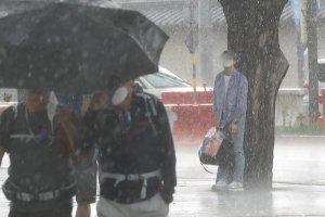 천둥 번개 동반, 시간당 50㎜ 폭우… 높은 습도 탓, 체감온도는 35도↑