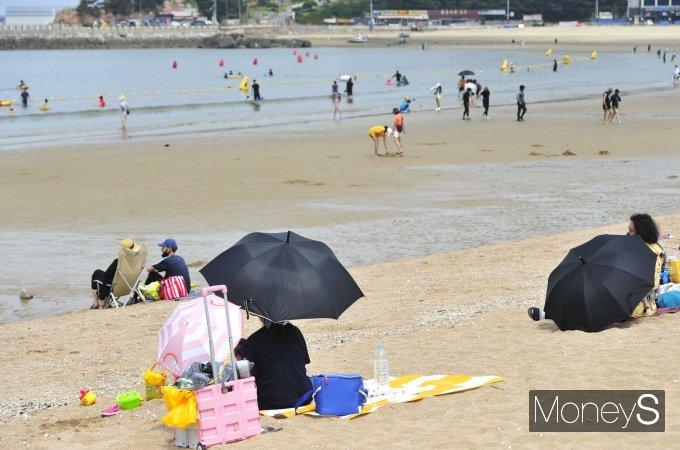 [머니S포토] '파라솔 대신 우산'