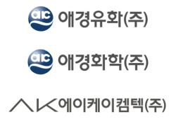 채형석 부회장 '경영권 승계' 본격화… 애경그룹 화학3사 합병 의결