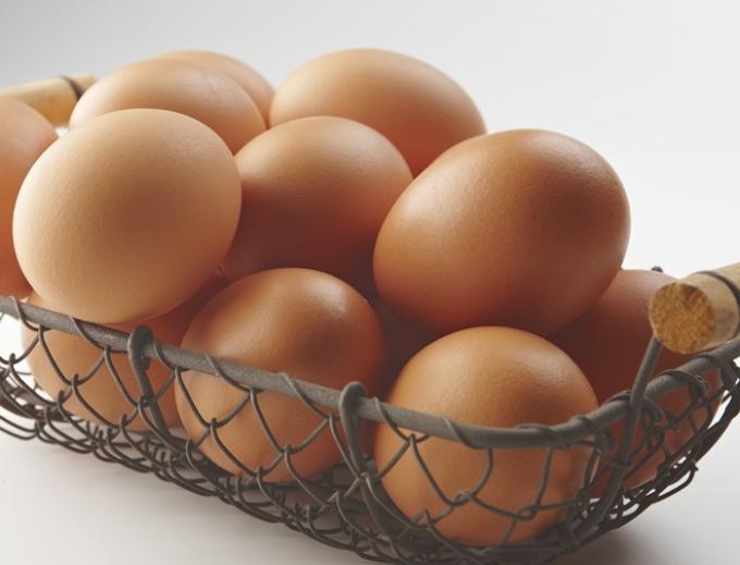 6일 성남시와 보건당국 등에 따르면 식중독이 발생한 분당 김밥집 2곳이 같은 업체에게 공급받은 식재료는 달걀뿐인 것으로 전해졌다. 사진은 기사 내용과 무관함. /사진=이미지투데이