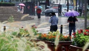 [오늘 날씨] 귀경길 빗길 운전 조심하세요…수도권 등 오전에 폭우 예보