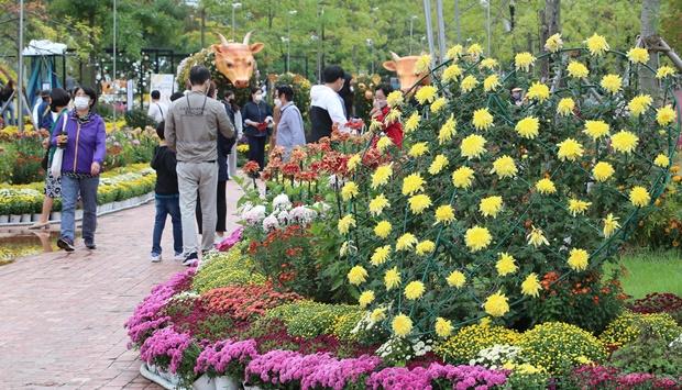 14일은 전국이 가끔 구름이 많은 가운데 일교차가 큰 날씨가 이어지겠다. 사진은 국화전시회가 열리고 있는 지난 11일 오후 대전 유성구 유림공원을 찾은 시민들이 깊어가는 가을 계절을 즐기는 모습. /사진=뉴스1